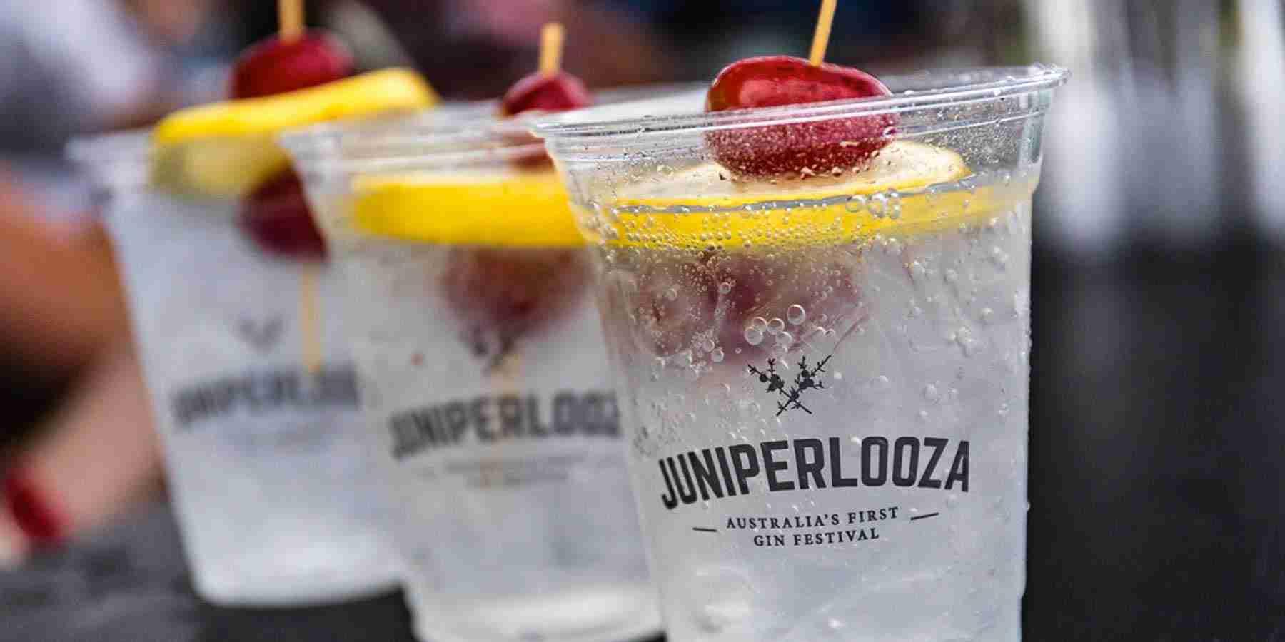 Melbourne's epic Juniperlooza announces 2020 program